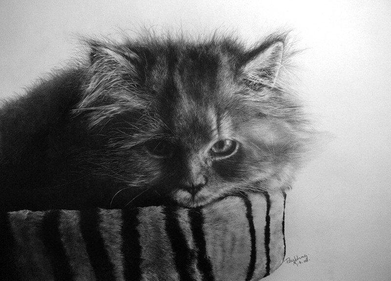 Paul Lung. Рисунки карандашом 13