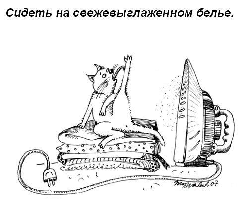 Что должна уметь кошка