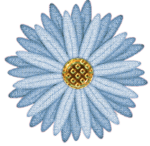 «элементы джинcовые»  0_94919_ae5d9445_S