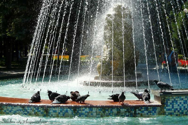Маленькие радости Белгородцев, фото Sanchess