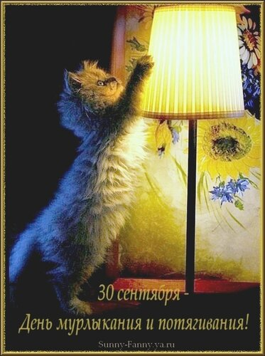 http://img-fotki.yandex.ru/get/6400/41649292.ab/0_6427d_ad117f3a_-6-L.jpg
