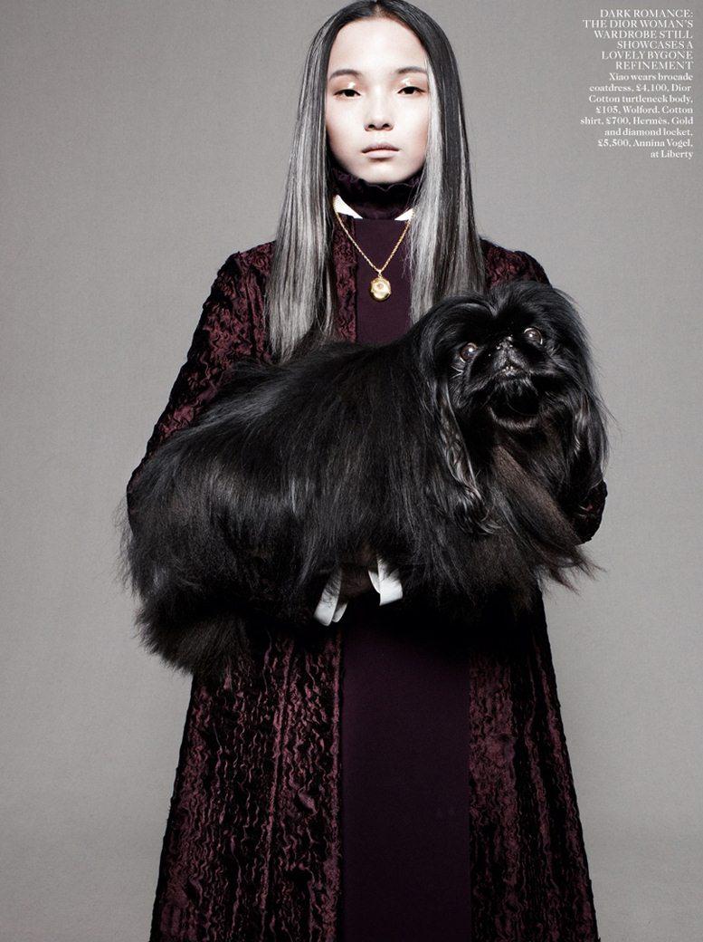 Best In Show - Xiao Wen Ju / Сяо Вэнь Цзюй, фотограф Daniel Jackson в журнале Vogue UK, август 2012
