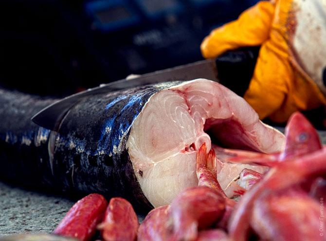 Рыба на одесском Привозе