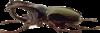 Скрап-набор Junkyard 0_961e5_64c0b664_XS