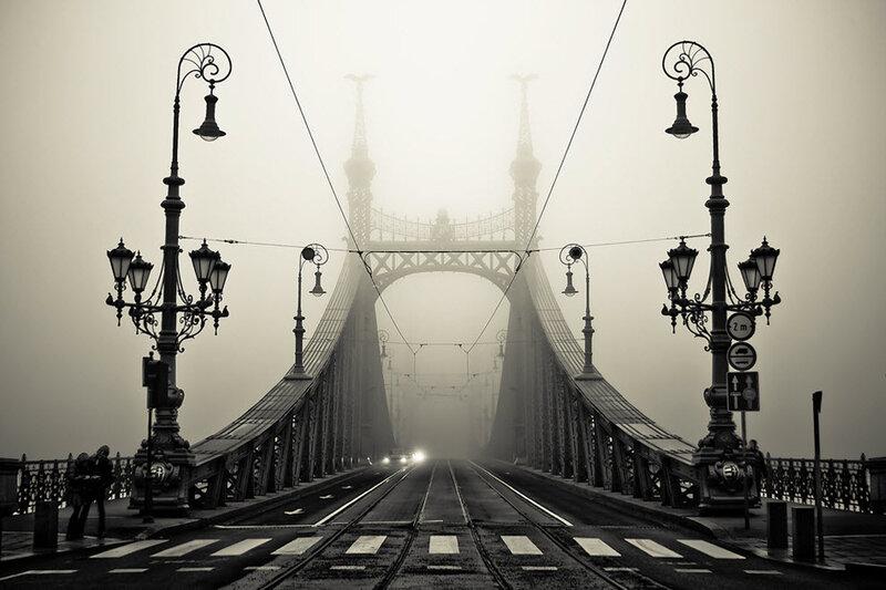 50 изумительных фотографий тумана