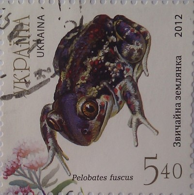 2012 N1262-1266 (b107) блок Земноводные Лягушки Фауна синяя 5.40