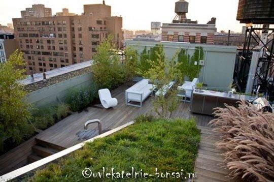 креативные сады