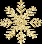 ial_slc_snowflake2.png