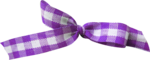 NLD Bow Vichy Purple.png