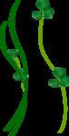 цветочки2а.png