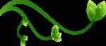 зелень1а.png
