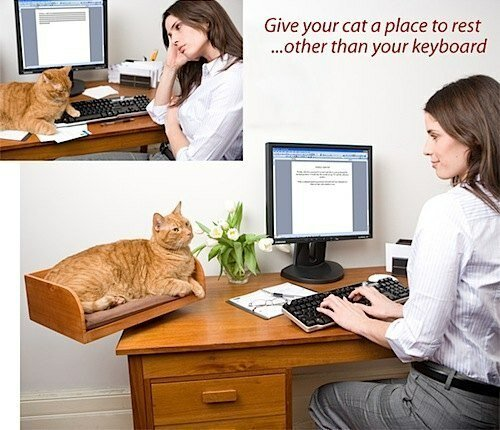 чтобы кот не спал на клавиатуре