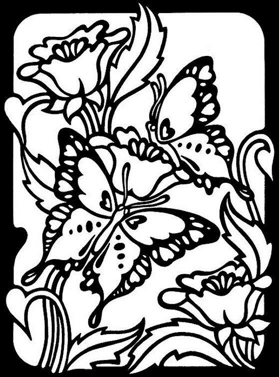 Бабочки и цветы картинки раскраски 6