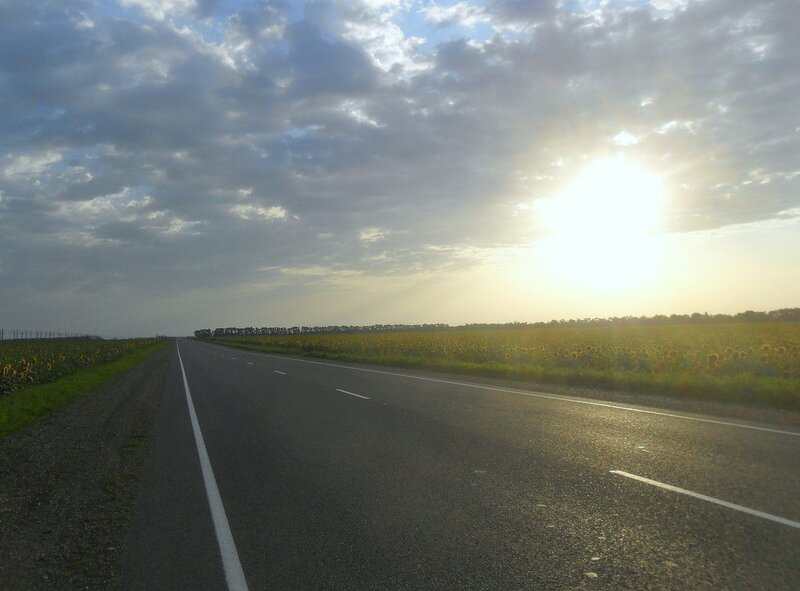 Набирает Солнце силу летнего дня ... SAM_8102.JPG