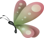 ial_lab_butterfly2.png