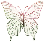 ial_lab_butterfly4.png