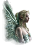 a anges (354).png