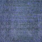 «элементы джинcовые»  0_9493a_cc99c693_S