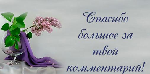 http://img-fotki.yandex.ru/get/6403/39663434.18b/0_77928_eab7556f_XXXL.jpg