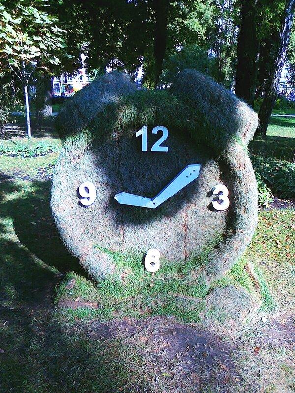Будильник из травы в парке Шевченко
