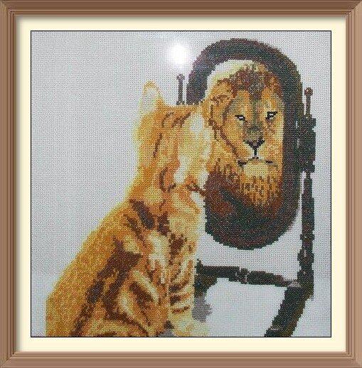 Котя в зазеркалье