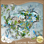 GoldenSun_Sleeping Moment