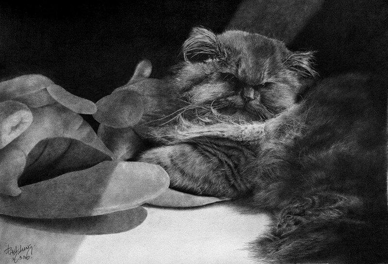 Paul Lung. Рисунки карандашом 11