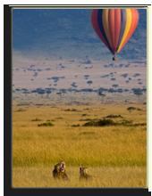 Кения. Масаи Мара. Фото jele76 - Depositphotos