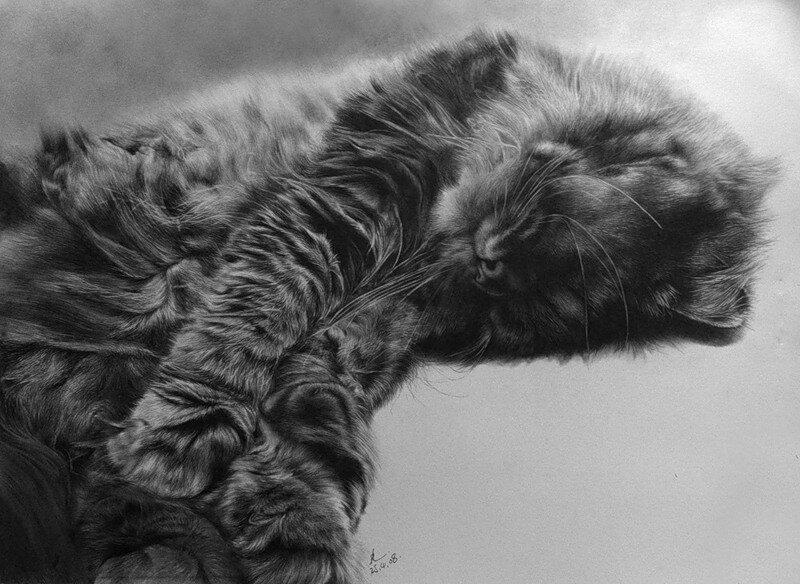 Paul Lung. Рисунки карандашом 17