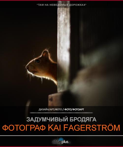 Задумчивый бродяга Kai Fagerström