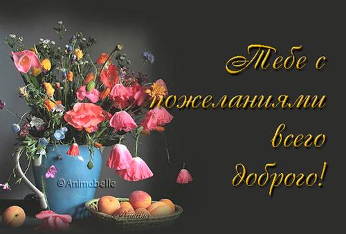 http://img-fotki.yandex.ru/get/6405/39663434.18c/0_77942_c4f6651e_L.jpg