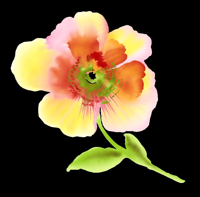 Цветок толерантности картинки 3