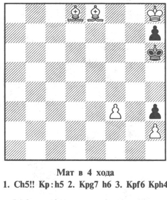 Шахматная запись. Интересные позиции, игры.JPG
