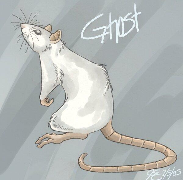 Re: Рисунки крыс.