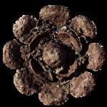 feli_btd_rusty metal flower.png