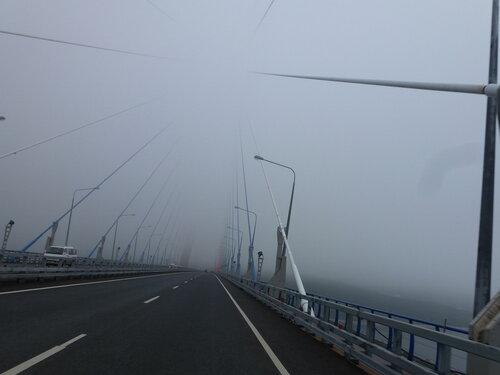 мост остров русский Владивосток фото