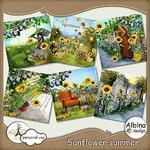 «AD_Sunflower_summer»  0_8c731_1f12798e_S