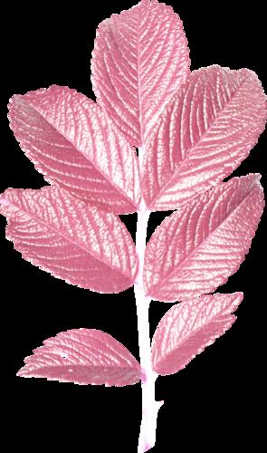 «Greedy-Pink» 0_8fcd3_d9e5f550_L