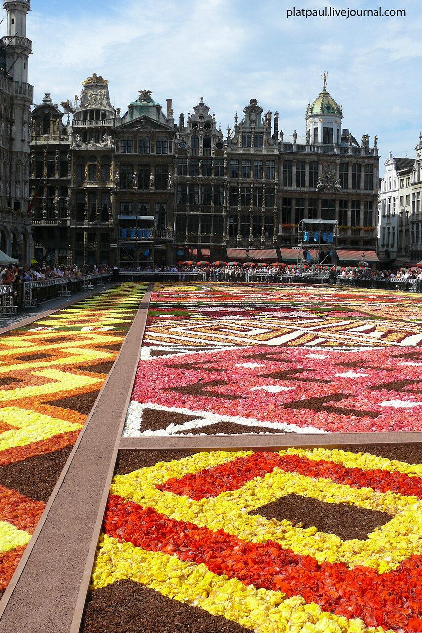 Брюссель2012