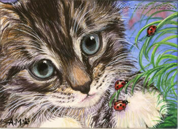 """Оригинал - Схема вышивки  """"Котёнок и божья коровка """" - Схемы автора  """"Eddy """" - Вышивка крестом."""