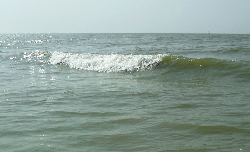 Среди волн, август 2012