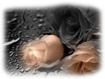 Romantic_Moments.png