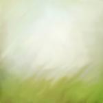 «Рыжий котенок» 0_8c68d_2862b3bb_S