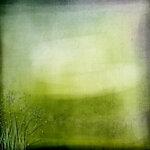 «Vanilla Dream» 0_8ddf5_dc484155_S