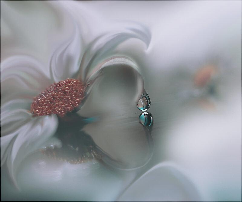 Красивые фотографии JULIANA_NAN