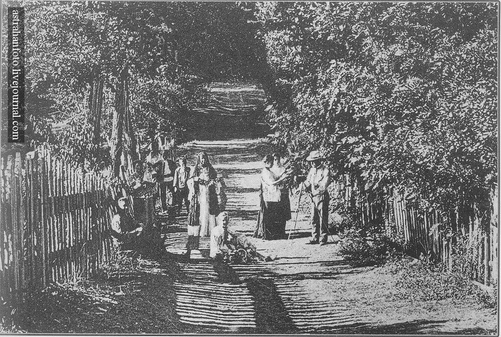 И.М. Бочкарев. Фруктовый сад около Астрахани. Фрагмент открытки. 1910-е годы.