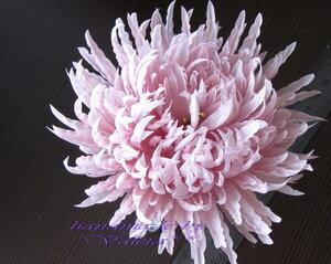 Астры и хризантемы - Страница 3 0_63cbd_8e9ba655_M