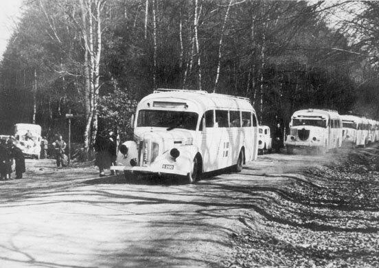 """Белые автобусы"""