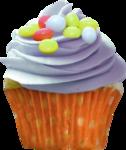 priss_Birthday_cupcake3.png