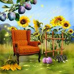 «AD_Sunflower_summer»  0_8c75c_2f9ae2c0_S